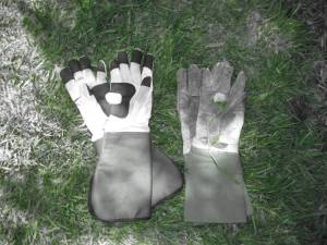 A pair of gloves